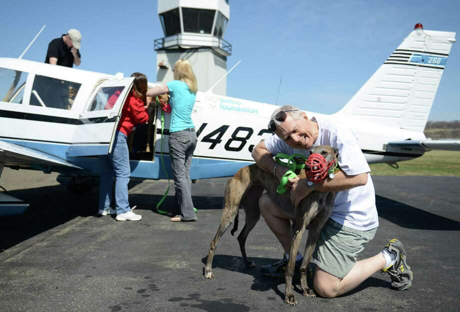 Geoff Harrington, of Ridgefield, embraces Rift, a greyhound dog, after getting off the plane with one other racing greyhound and two injured greyhound dogs at Danbury Airport in Danbury, Conn. Saturday, April 12, 2014.  The Brave Tide Foundation flew the dogs in from West Virginia to Greyhound Rescue & Rehabilitation in Cross River, N.Y., which is providing medical care for the two injured dogs that would have otherwise been euthanized. Photo: Tyler Sizemore / The News-Times