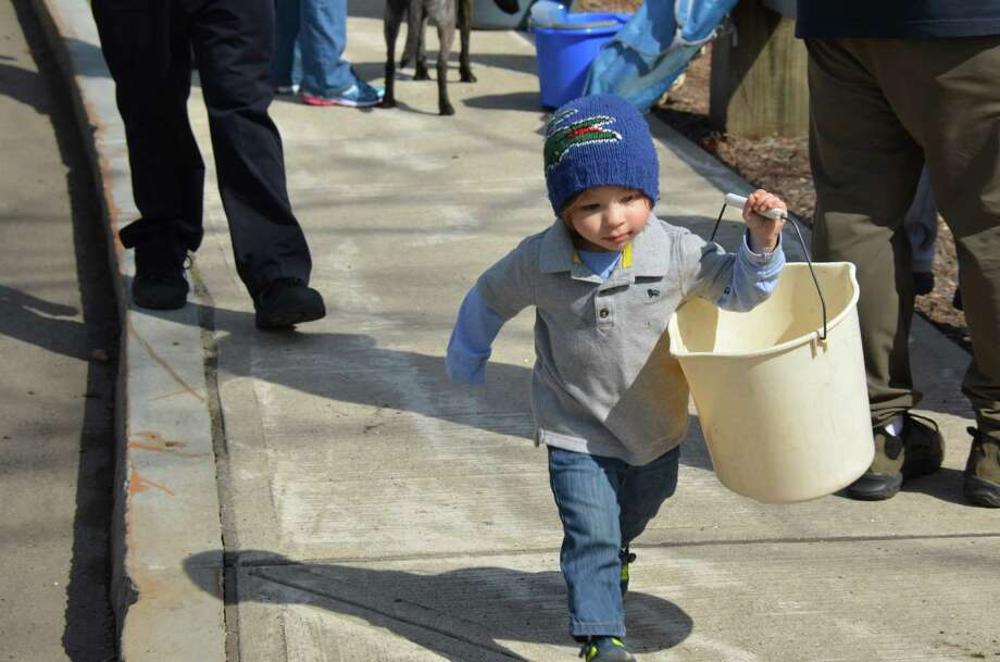 Little Peter Vetti takes off down the sidewalk at the annual fishing derby held at New Canaan's Mill Pond on Saturday, April 12, 2014. Photo: Jeanna Petersen Shepard, Freelance Photo / New Canaan News freelance