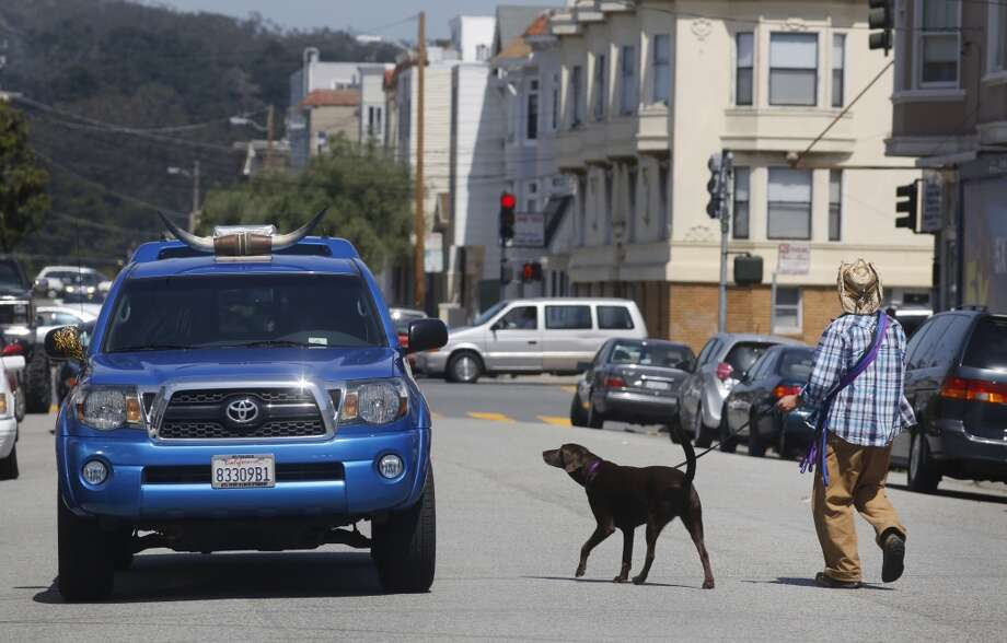 Wild Bill Peacock picks up a lab named Hunter before heading out for a walk at Fort Funston. Photo: Mike Kepka, The Chronicle