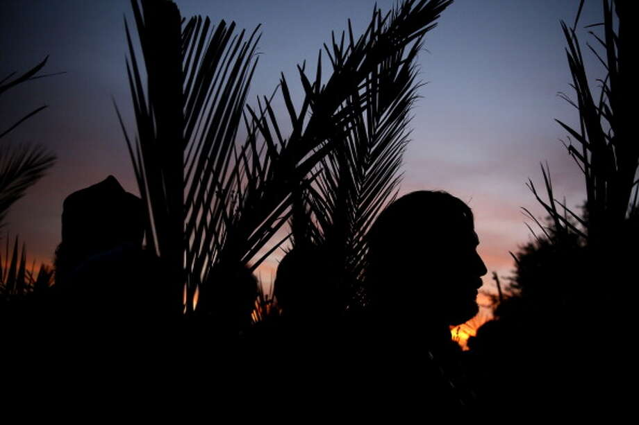 Christian Orthodox pilgrims carry palm branches and flowers during a procession on the eve of Palm Sunday from Mt. of Olives into Jerusalem's Old City on April 12, 2014. The ceremony is a landmark in the Christian calendar, marking the triumphant return of Jesus Christ to Jerusalem the week before his crucifixion, when a cheering crowd greeted him waving palm leaves. Palm Sunday marks the start of the most solemn week in the Christian calendar. Photo: GALI TIBBON, AFP/Getty Images / 2014 AFP
