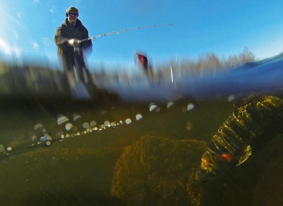 Try not to hook the underwater photographer, Phil: Phil Smith reels in a trout he caught in Tobyhanna Lake at 
