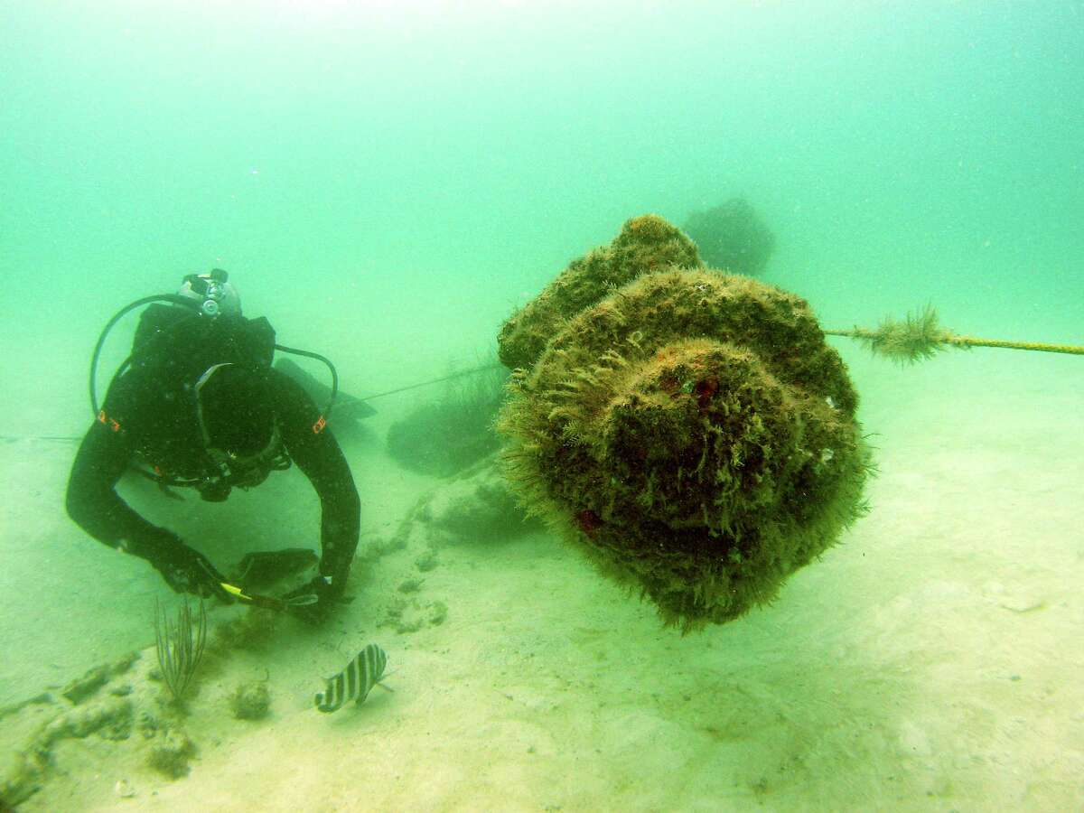 The shipwreck of the USS Narcissus sits in 15 feet of water near Tampa.