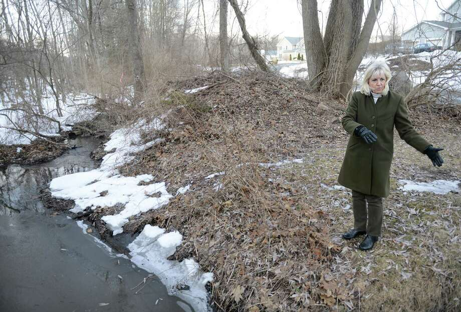 Jean Hartnett shows where the rain water runoff is supposed to, but fails, to go into the Limekiln Brook in the backyards of her neighbors in Brookfield, Conn. Friday, March 14, 2014.  The Limekiln Brook runs alongside Hillside Court and Hillside Circle, passing through many of the properties, and causes severe flooding and standing water when it rains. Photo: Tyler Sizemore / The News-Times
