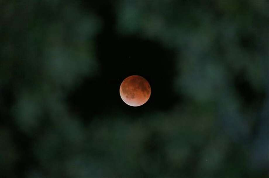 The Earth's shadow is cast over the surface of the moon as a total lunar eclipse is seen though a Magnolia tree top in the sky over Tyler, Texas at 2:57 CDT on Tuesday morning, April 15, 2014. Photo: Dr. Scott M. Lieberman, Associated Press / FR170792 AP