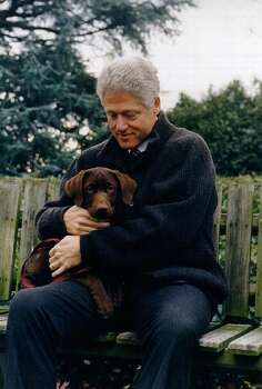 """President Bill Clinton with his new dog, a three month old choclate labrador puppy. The puppy which belongs to Clinton friend Tony Harrington will joint the White House cat, """"socks"""". The puppy has yet to be named. Photo: The White House, Getty Images / Getty Images North America"""