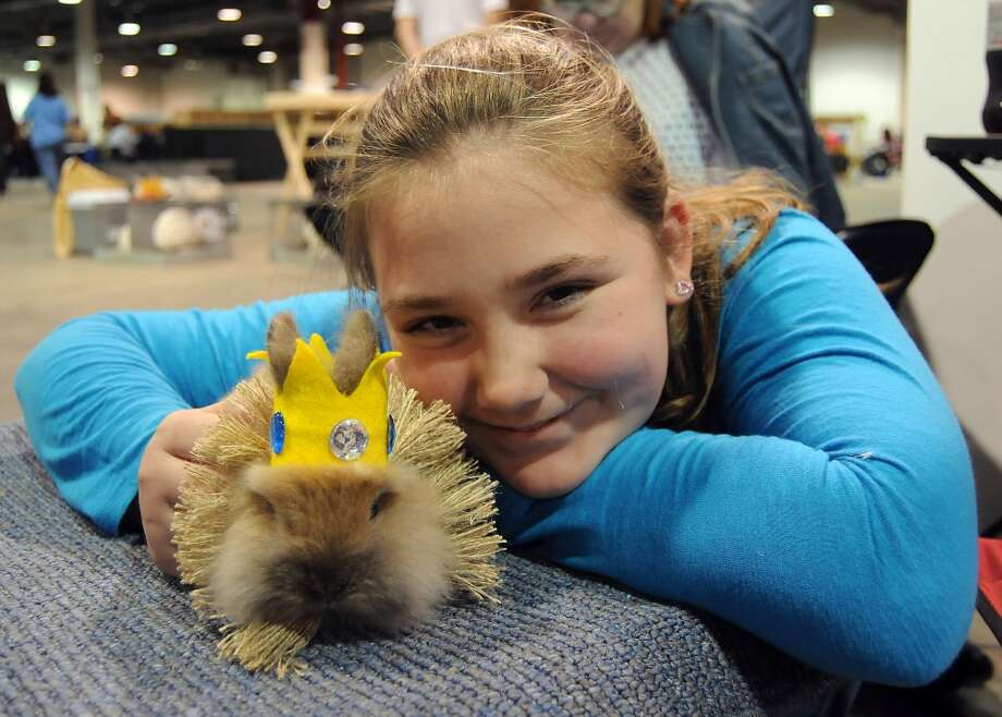 Miriam Hargrove,11, from Manville, shows off  her rabbit Little Bud for the rabbit and cavy costume contest at the Houston LIvestock Show and Rodeo Saturday  March 15, 2014.(Dave Rossman photo) Photo: Dave Rossman, For The Houston Chronicle