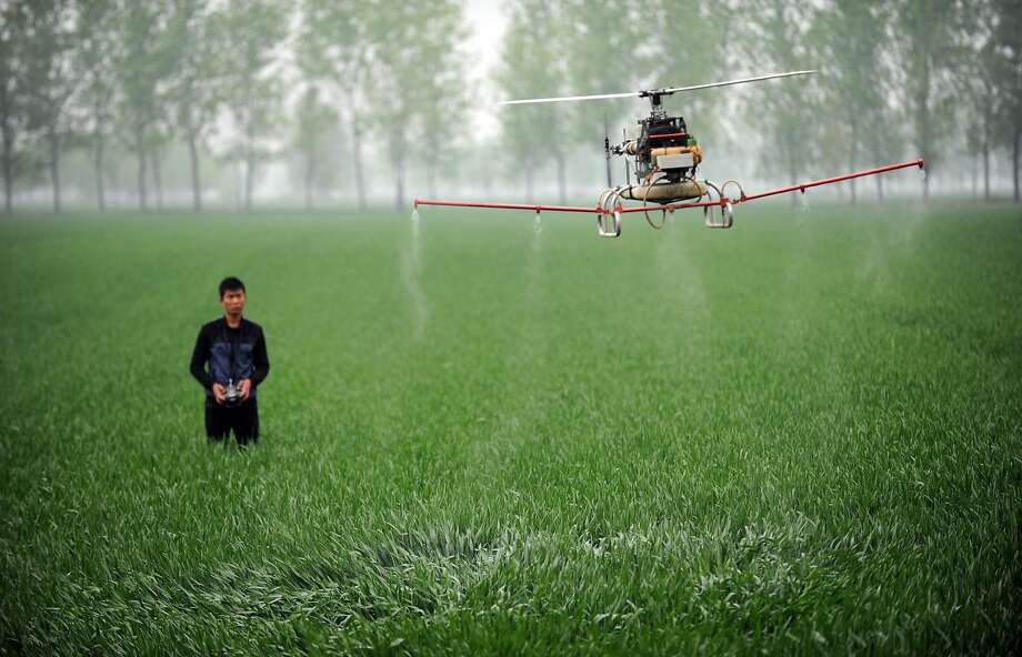 Drone attack kills thousands (of bugs):A farmer uses a drone to spray pesticides on a farm in Bozhou, China's Anhui province. Photo: Str, AFP/Getty Images