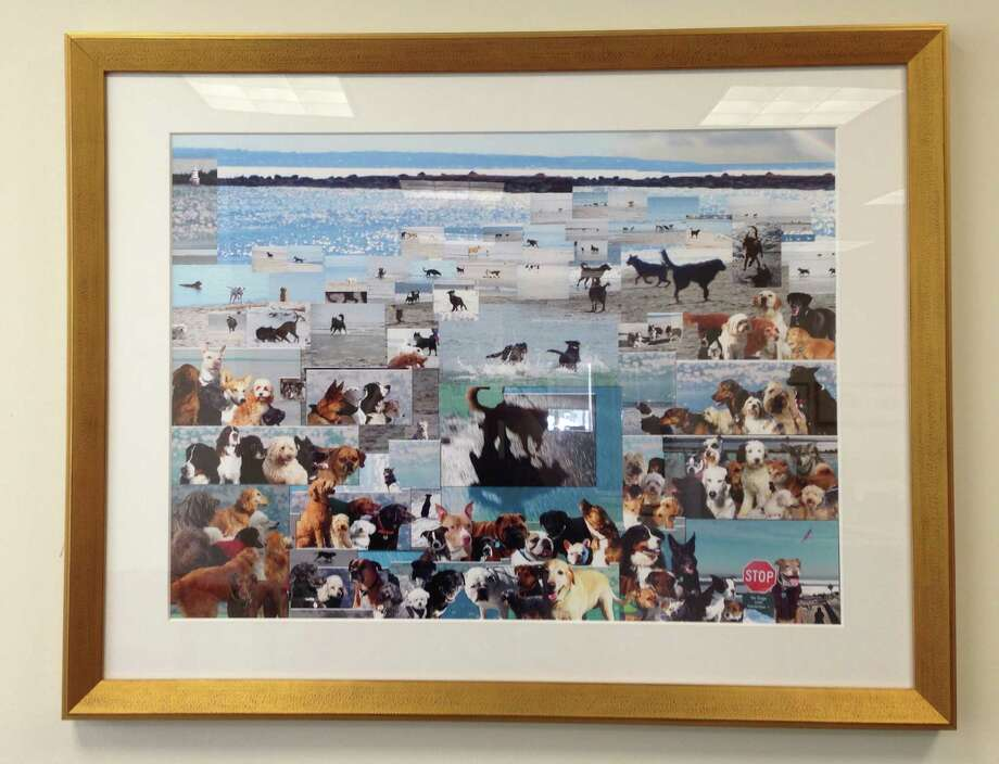 "Artist Emily Lopatin has sought to capture the gleeful abandon of canines on the beaches of Greenwich in her latest work,"" Manís Best Friend,î which is currently hanging in Town Hall. Photo: Justin Pottle, Anne Semmes / Greenwich Time"