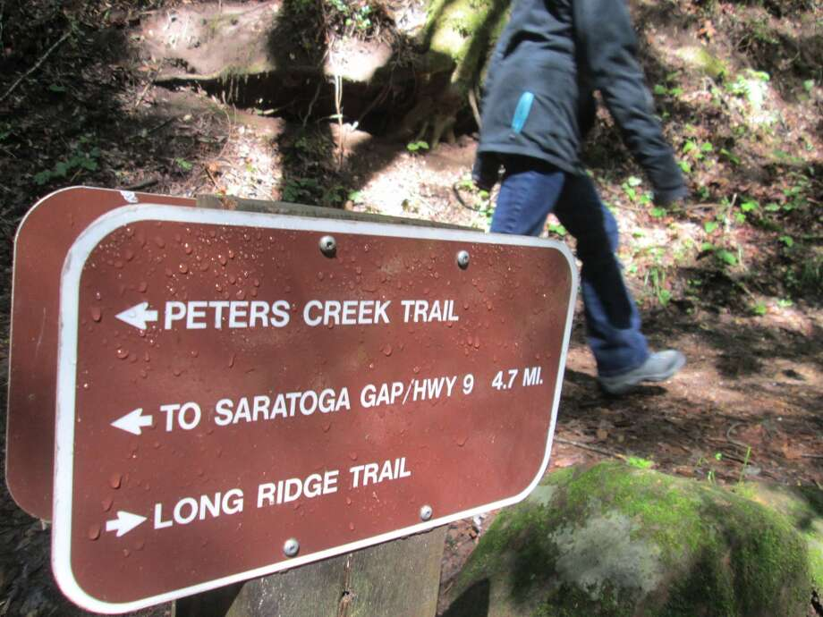 For Long Ridge Loop, I turn right here for short, steep climb, gentle descent Photo: Tom Stienstra