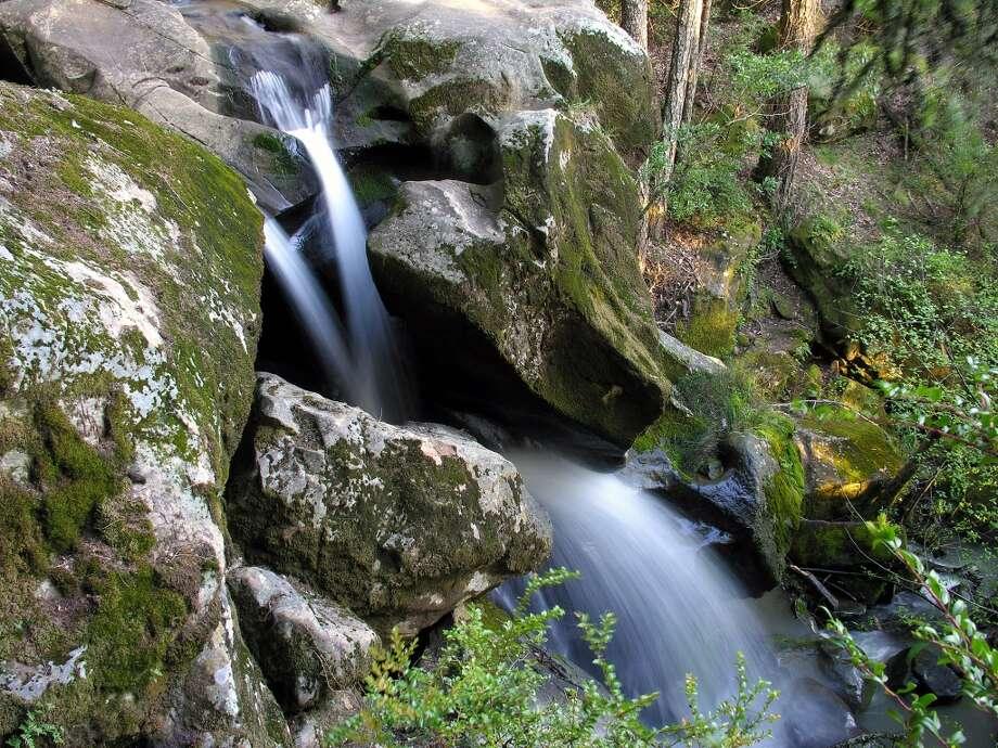 Small cascade on Peters Creek at Long Ridge Open Space Preserve. Photo: Deane Little, Courtesy Deane Little