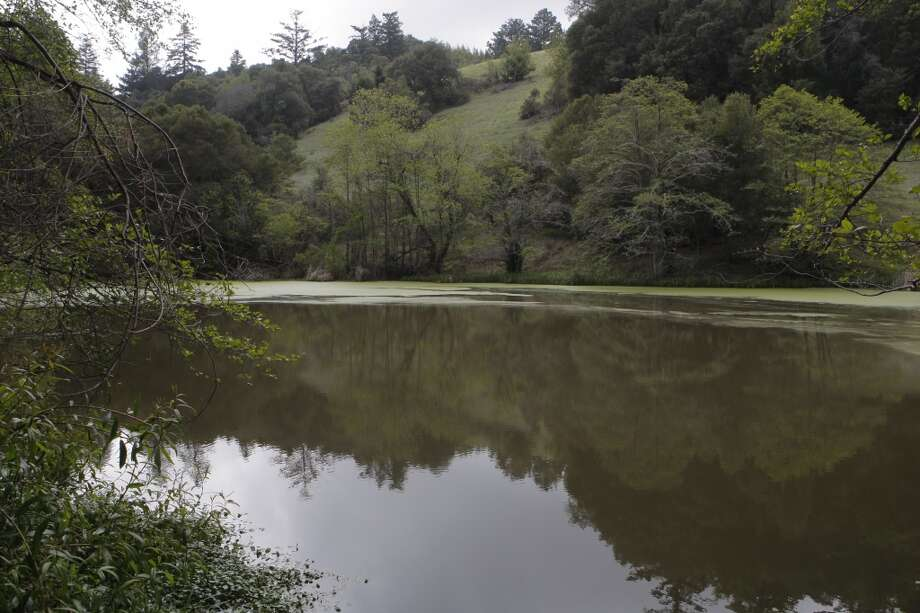 On Long Ridge Loop, you pass a surprise pond (on private property), nestled in the foothills Photo: Tom Stienstra