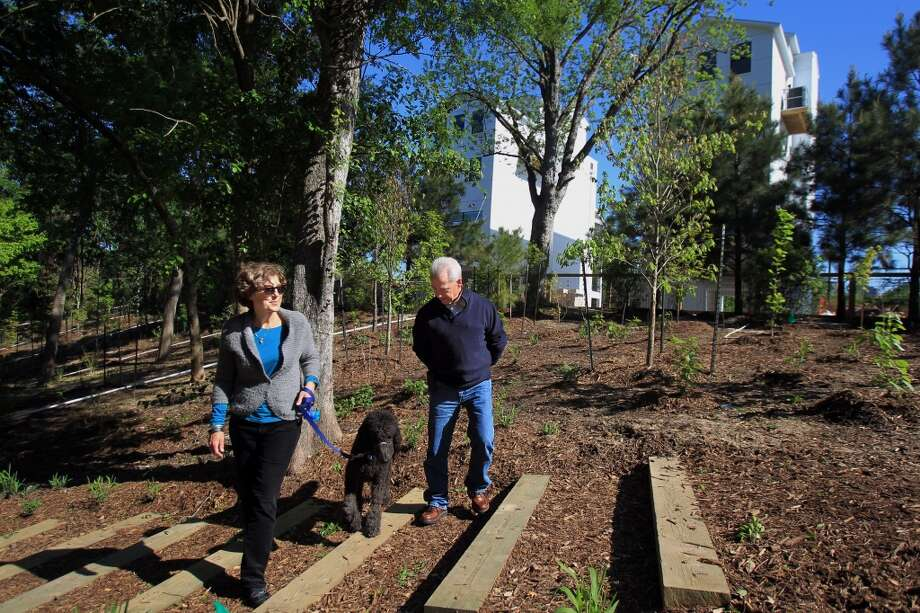 Becky Houston and Patrick Rutledge, members of Friends of Woodland Park, walk through the renovated area of the park after it was illegally bulldozed by a developer of nearby townhomes several months ago. Following a settlement with the city and a fine to the developer, the park was able to receive money for renovations on April 15, 2014, in Houston, Tx. ( Mayra Beltran / Houston Chronicle ) Photo: Mayra Beltran, Houston Chronicle