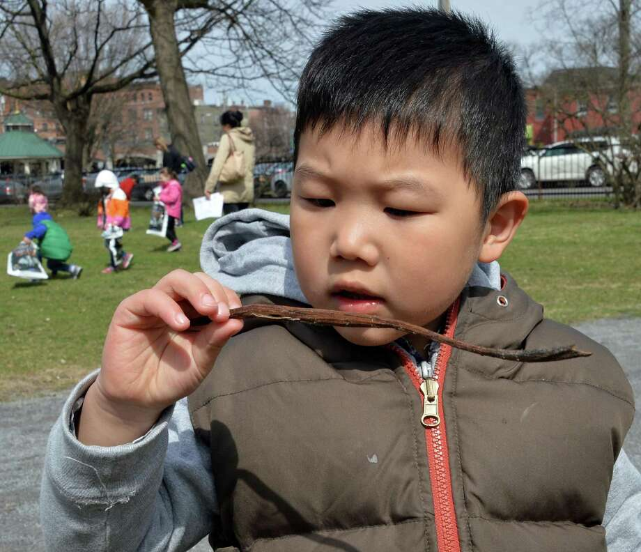 Four-year-old Ethan Yu of Clifton Park collects natural materials in Congress Park to make a twig vase during a Reconnecting with Nature program held by Saratoga Springs Public Library Thursday morning, April 17, 2014, in Saratoga Springs, N.Y.  (John Carl D'Annibale / Times Union) Photo: John Carl D'Annibale / 00026521A
