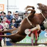 In this April 13, 2014, a South American cowboy known as a gaucho, and the wild horse he rides on, fall during a rodeo organized as part of Holy Week celebrations in Montevideo, Uruguay. The rodeo is one of the main attractions during Easter, also known as Tourism Week or Semana Criolla in Uruguay.
