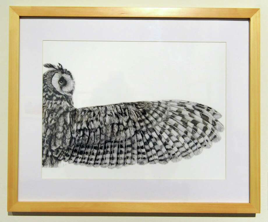 ?Long-eared Owl? by Joana Araujo Bruno of Barreiro, Portugal is featured in a new art exhibit at the New York State Museum, titled Focus on Nature XIII: Natural and Cultural History Illustration Friday, April 18, 2014, in Albany, N.Y. The exhibit showcases 91 natural and cultural history illustrations from 71 artists from around the world. (Lori Van Buren / Times Union) Photo: Lori Van Buren / 00026557A