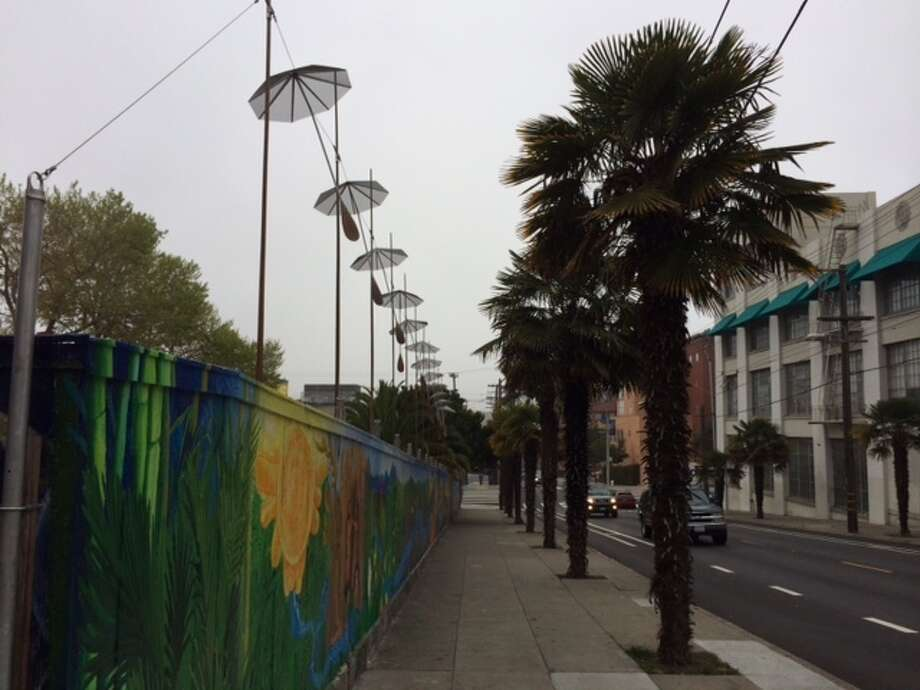The row of palms along 17th Street and the series of umbrella sculptures Young put up in harmony. The Chronicle/Sam Whitin