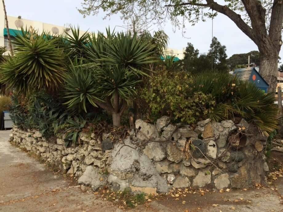 A palm grotto in the private parking lot of Project Artaud. The Chronicle/Sam Whiting