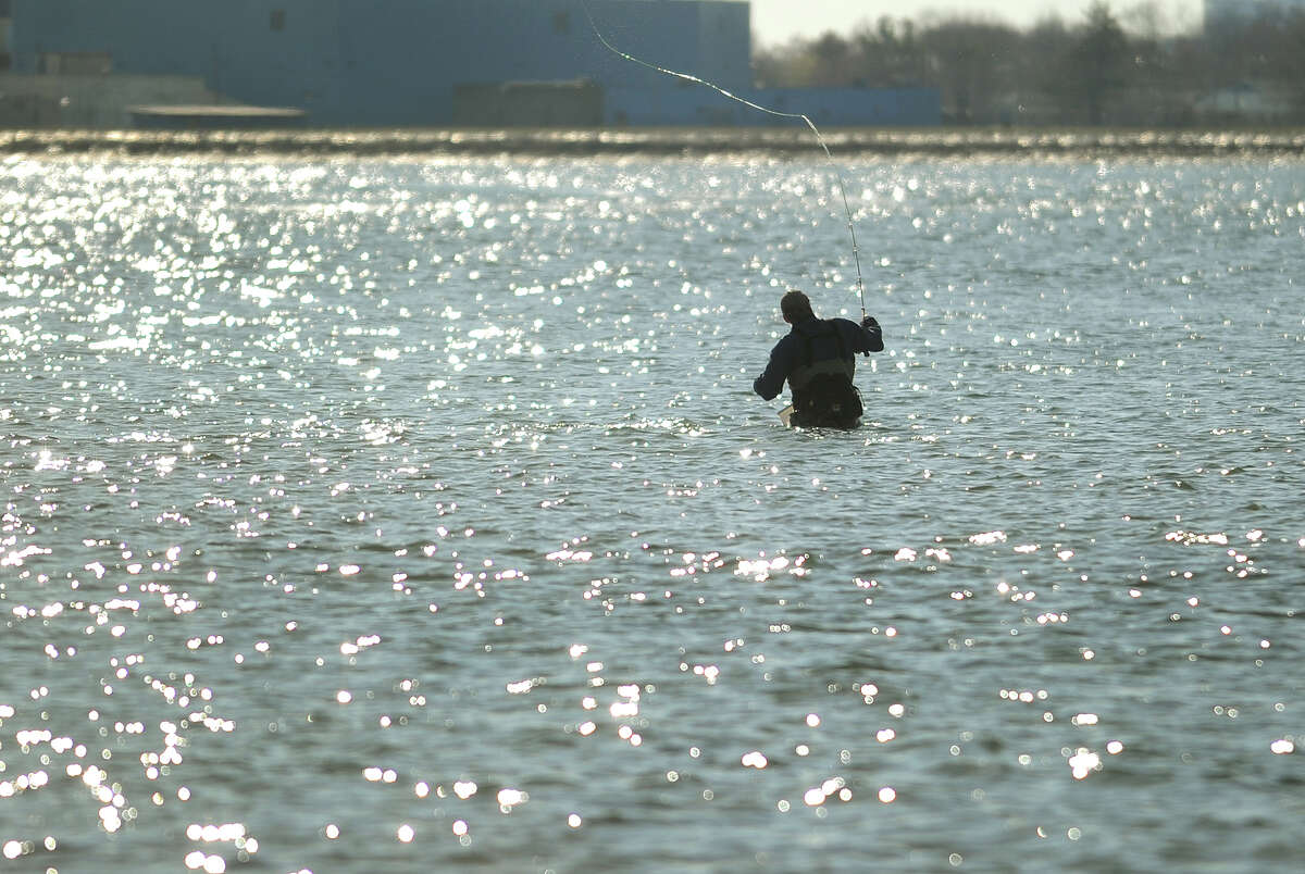 A fly fisherman casts for stripers in the mouth of the Housatonic River off Smith Point in Milford, Conn. on Sunday, April 20, 2014.