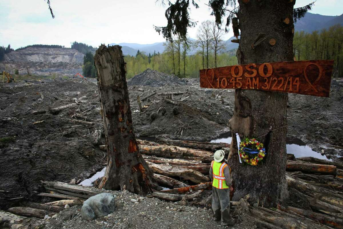 Ben Woodward looks up at a sign commemorating the moment of the Oso mudslide. The wooden memorial was attached to a towering spruce tree, one of the few in the debris field left standing after the disaster. The towering tree is already becoming a memorial to those killed and a sign of hope amid despair. The 22nd is the one month anniversary of the mudslide that killed a confirmed 41 people. Two are still on the missing person list. Photographed on Monday, April 21, 2014