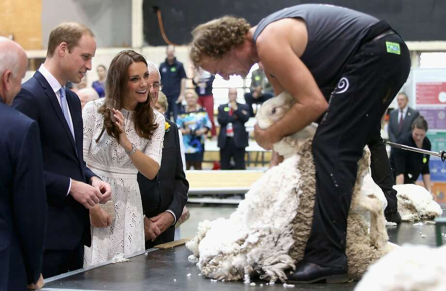 Catherine, Duchess of Cambridge and Prince William, Duke of Cambridge watch a shearing demonstration as they visit the Sydney Royal Easter Show on April 18, 2014 in Sydney, Australia. The Duke and Duchess of Cambridge are on a three-week tour of Australia and New Zealand, the first official trip overseas with their son, Prince George of Cambridge.  Photo: Chris Jackson, Getty Images