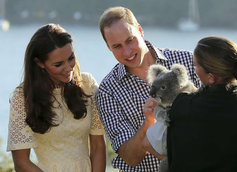 Britain's Prince William and his wife Kate, the Duchess of Cambridge, left, meet Leuca the Koala held by keeper Lucinda Cveticanin during a wildlife show while on a visit to Taronga Zoo in Sydney,  Australia, Sunday, April 20, 2014. Photo: Rob Griffith, Associated Press