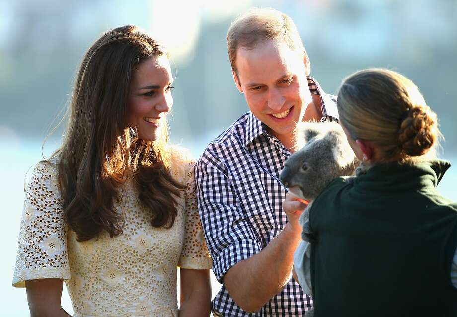 Prince William, Duke of Cambridge, and Catherine, Duchess of Cambridge, meet a Koala at Taronga Zoo on April 20, 2014 in Sydney, Australia. The Duke and Duchess of Cambridge are on a three-week tour of Australia and New Zealand, the first official trip overseas with their son, Prince George of Cambridge.  Photo: Ryan Pierse, Getty Images