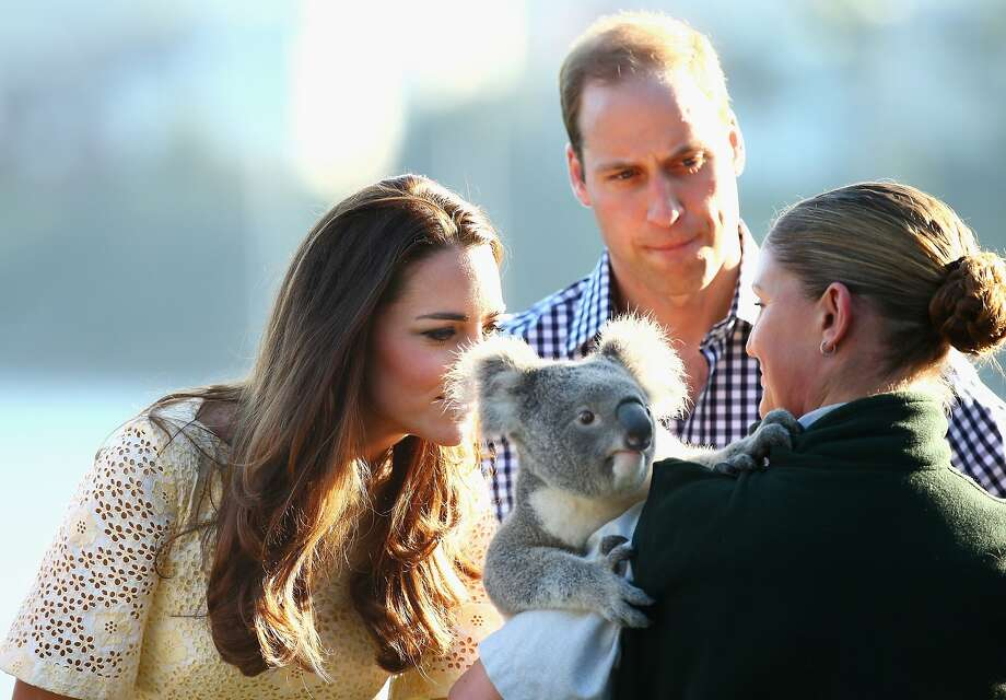 Catherine, Duchess of Cambridge, smells a Koala as Prince William, Duke of Cambridge looks on at Taronga Zoo on April 20, 2014 in Sydney, Australia. The Duke and Duchess of Cambridge are on a three-week tour of Australia and New Zealand, the first official trip overseas with their son, Prince George of Cambridge. Photo: Ryan Pierse, Getty Images