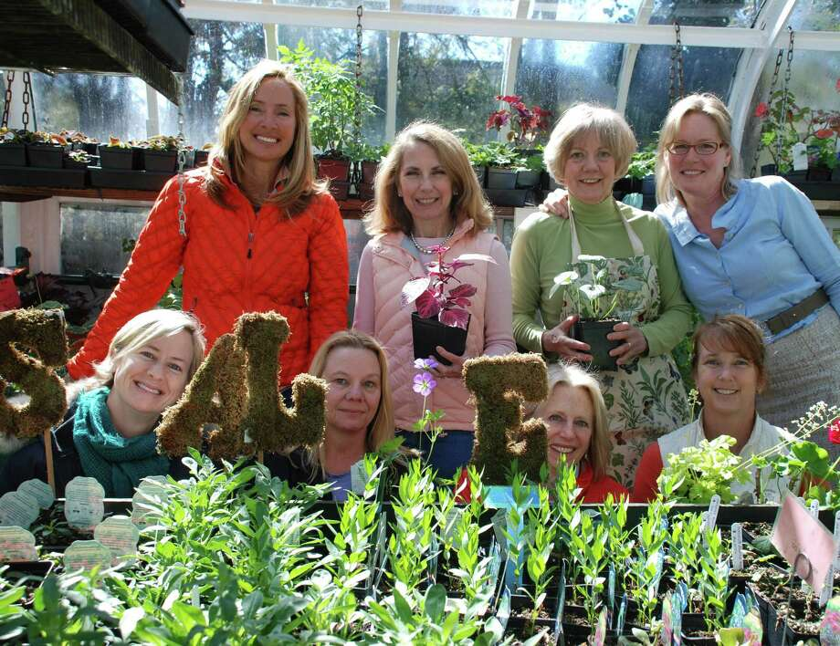 Members of the Darien Community Association Greenhouse Group take a break from preparing for the Plant Sale & Tea May 8 and 9. Front row from left, Tere Stevens, Susan Mulderrig, Kristy Barclay and Ginger Morgan; back row, Katie Keith, Allie Callan, Sheila Sherwood and Heather Pommernelle. Photo: Contributed Photo, Contributed / Darien News
