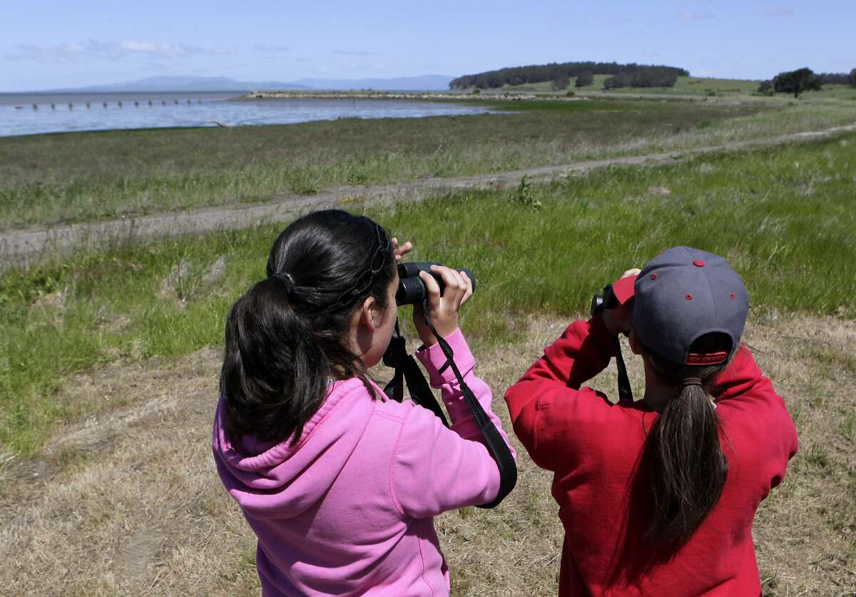 Odalys Ariza (left) and Liane Herzfeld, both 13, view wildlife during a groundbreaking ceremony for Breuner Marsh restoration project in Richmond, Calif. on Tuesday, April 22, 2014. When completed, the 50-acre wetlands site will become a part of the East Bay Regional Park District's Point Pinole park.