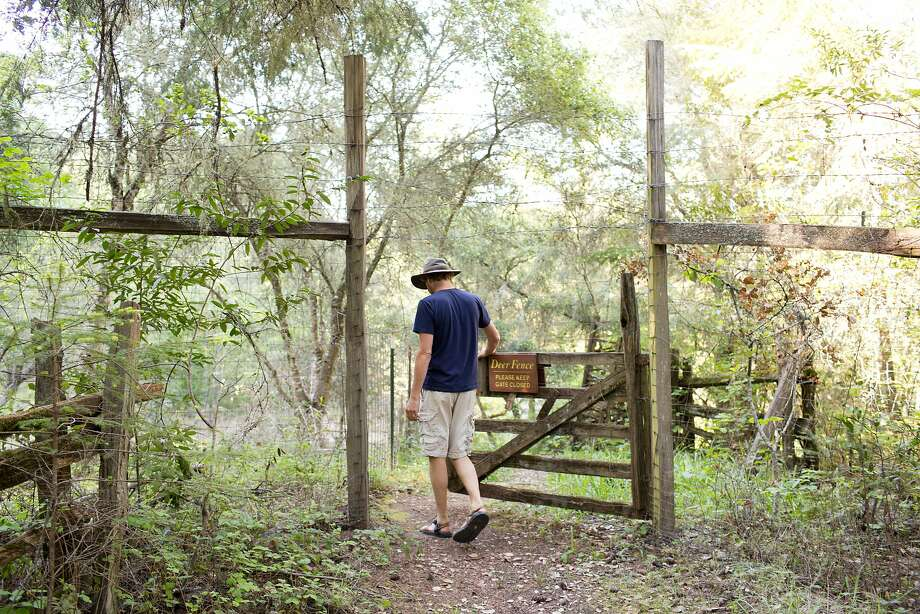 Adam Wolpert, a sowing circle community member and arts program director, walks through a deer fence near the Occidental Arts and Ecology Center. Photo: Jason Henry, Special To The Chronicle