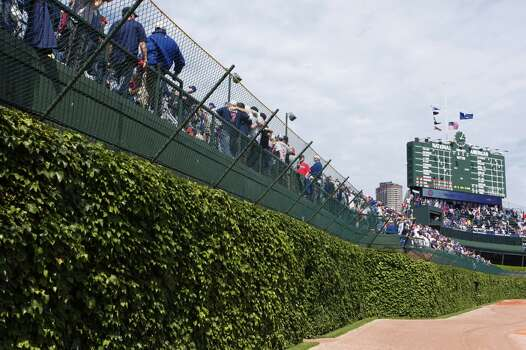 Detail view of the outfield wall covered with ivy and the scoreboard in center field following the game between the Chicago Cubs and Minnesota Twins at Wrigley Field on June 13, 2009 in Chicago, Illinois. The Twins defeated the Cubs 2-0. (Photo by Joe Robbins/Getty Images) Photo: Joe Robbins, Getty Images