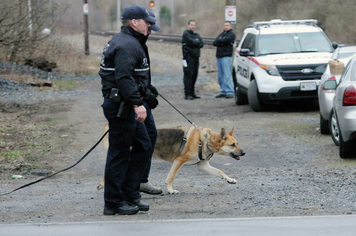 State Police along with a police dog search an area off of Alplaus Avenue on Wednesday, April 23, 2014, in Glenville, N.Y. State Police were in the area resuming the search for Craig Frear, who disappeared in 2004. (Paul Buckowski / Times Union)