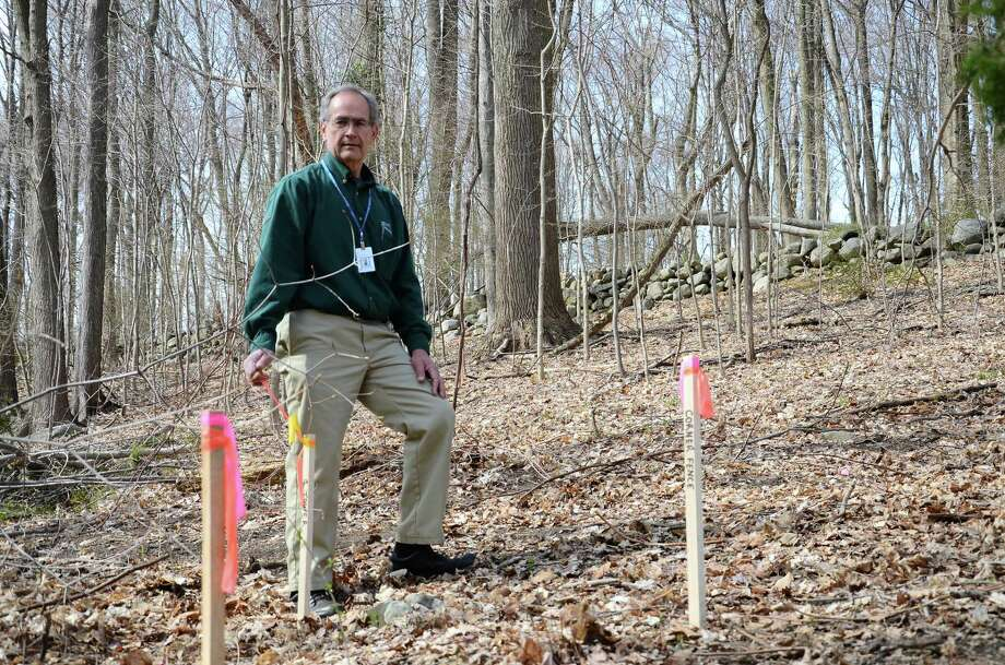 Frank Morabito, facilities manager at Silver Hill Hospital, 208 Valley Road, New Canaan, Conn., shows the future location of a cell phone tower in the northern section of the property on Tuesday, April 22, 2014. Photo: Nelson Oliveira / New Canaan News