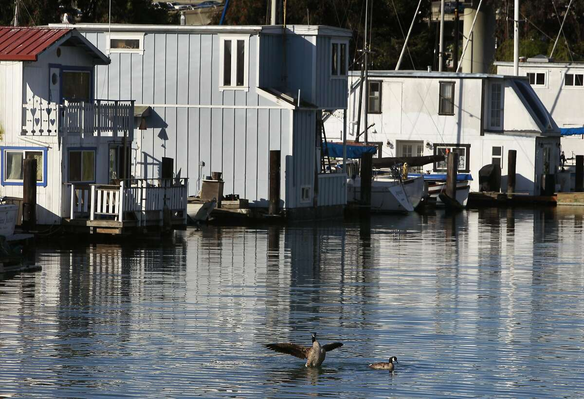 Canada geese swim near house boats on Mission Creek in San Francisco, Calif. on Wednesday, April 23, 2014.