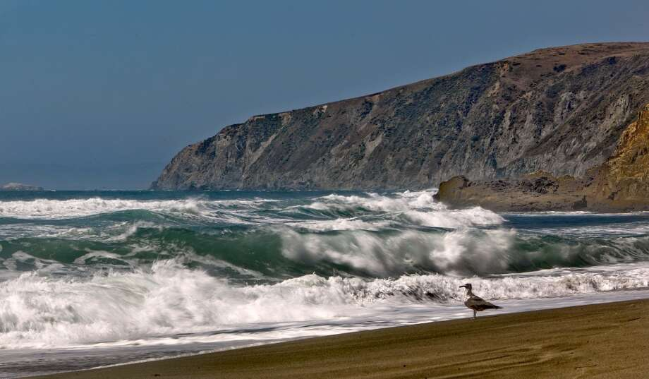 The Bay Area has acres of majestic coastlines to choose from for a beach proposal but we recommend trying out this Marin County destination. Tomales Point by Point Reyes National Seashore is a perfect day trip from San Francisco and you can get oysters after! Bring your own champagne. Photo: Michael Macor, The Chronicle
