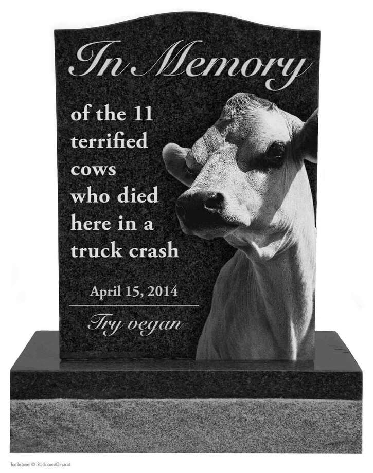 People for the Ethical Treatment of Animals wants to erect this monument at the scene of an April 15, 2014, crash where 11 cows died. The animals died when the tractor trailer they were being transported in rolled over.  (People for the Ethical Treatment of Animals)