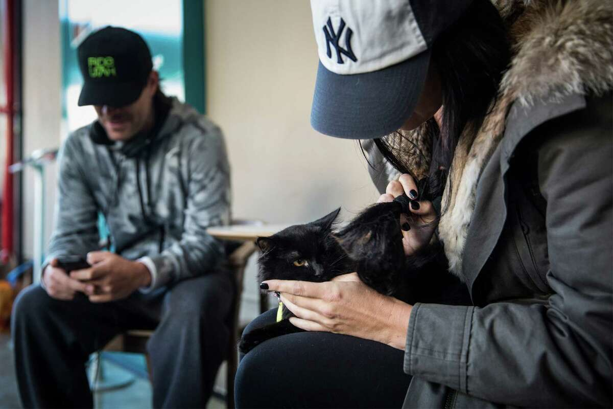 NEW YORK, NY - APRIL 24: Jennifer Powers pets a cat in the pop-up shop