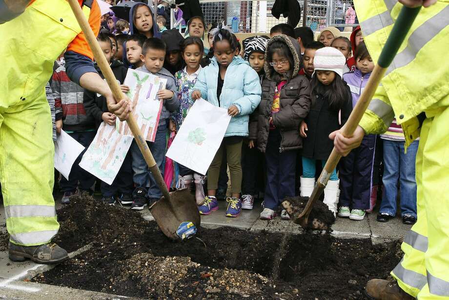 Students watch while workers demonstrate how to properly plant a tree during an Arbor Day celebration at Global Family Elementary School in Oakland. Photo: Codi Mills, The Chronicle