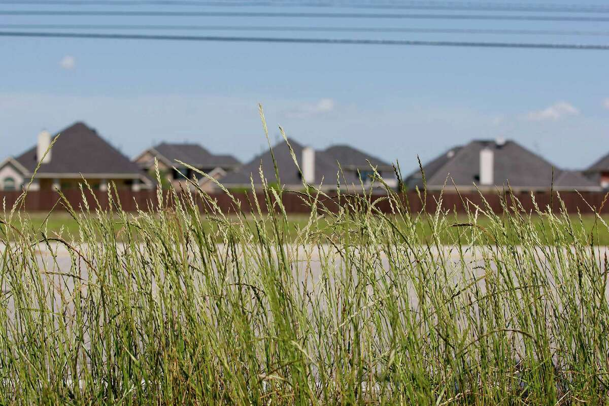 Homes peek above the fence line next to an open field in the Avalon Terrace community in Pearland.