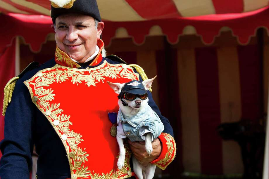 Hilario De La Pena of San Antonio is handed Chico, a white Chihuahua wearing a jean biker jacket, for a photograph. De La Pena portrayed the General Antonio Lopez de Santa Anna during the re-enactment of the Battle of San Jacinto, Saturday, April 26, 2014, in Houston. Photo: Marie D. De Jesus, Houston Chronicle / © 2014 Houston Chronicle