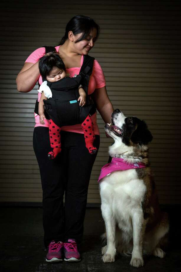Bella, a Saint Bernard, is shown with owner Latoya Gutierrez and her 3-month-old daughter, Heaven. The dog is like a member of her growing family. Photo: JOSHUA TRUJILLO, SEATTLEPI.COM / SEATTLEPI.COM