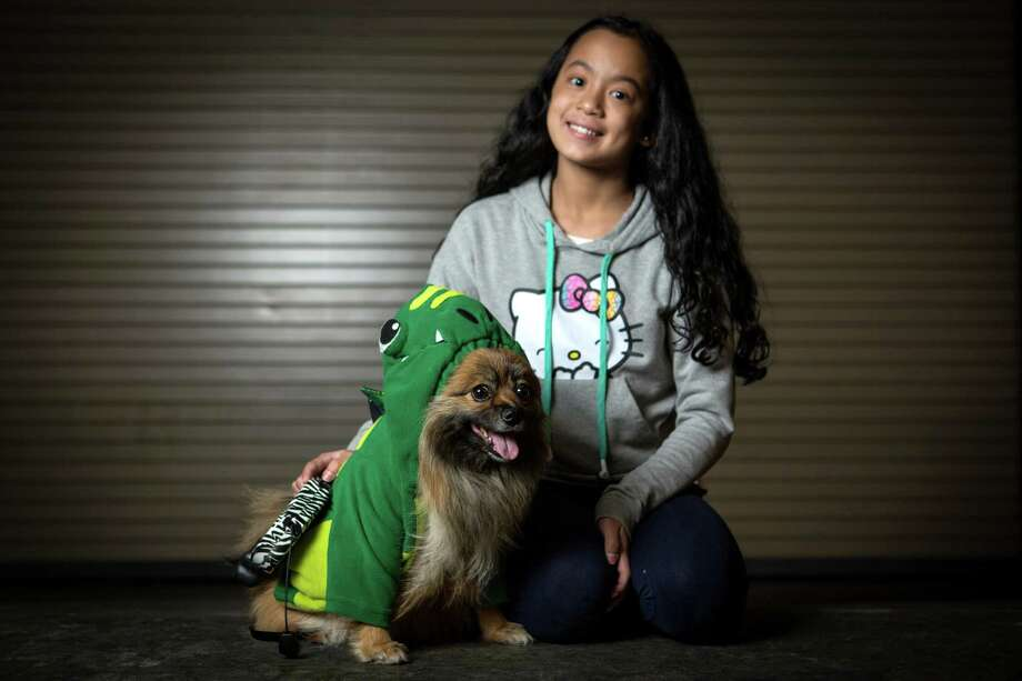 Hannah, a pomeranian-chihuahua mix, is shown with owner Aaliyah Viloria, 11. Photo: JOSHUA TRUJILLO, SEATTLEPI.COM / SEATTLEPI.COM