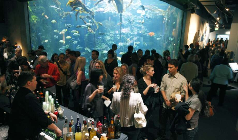 Drink at a special event in a S.F. museum.  Photo: Lance Iversen, The Chronicle