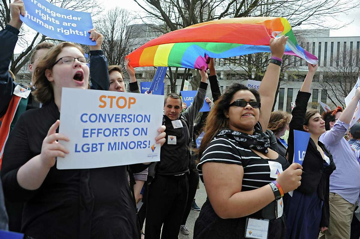 People participate in the New York LGBT Equality & Justice Day 2014 rally hosted by Empire State Pride Agenda Tuesday, April 29, 2014, at the Capitol in Albany, N.Y (Lori Van Buren / Times Union)