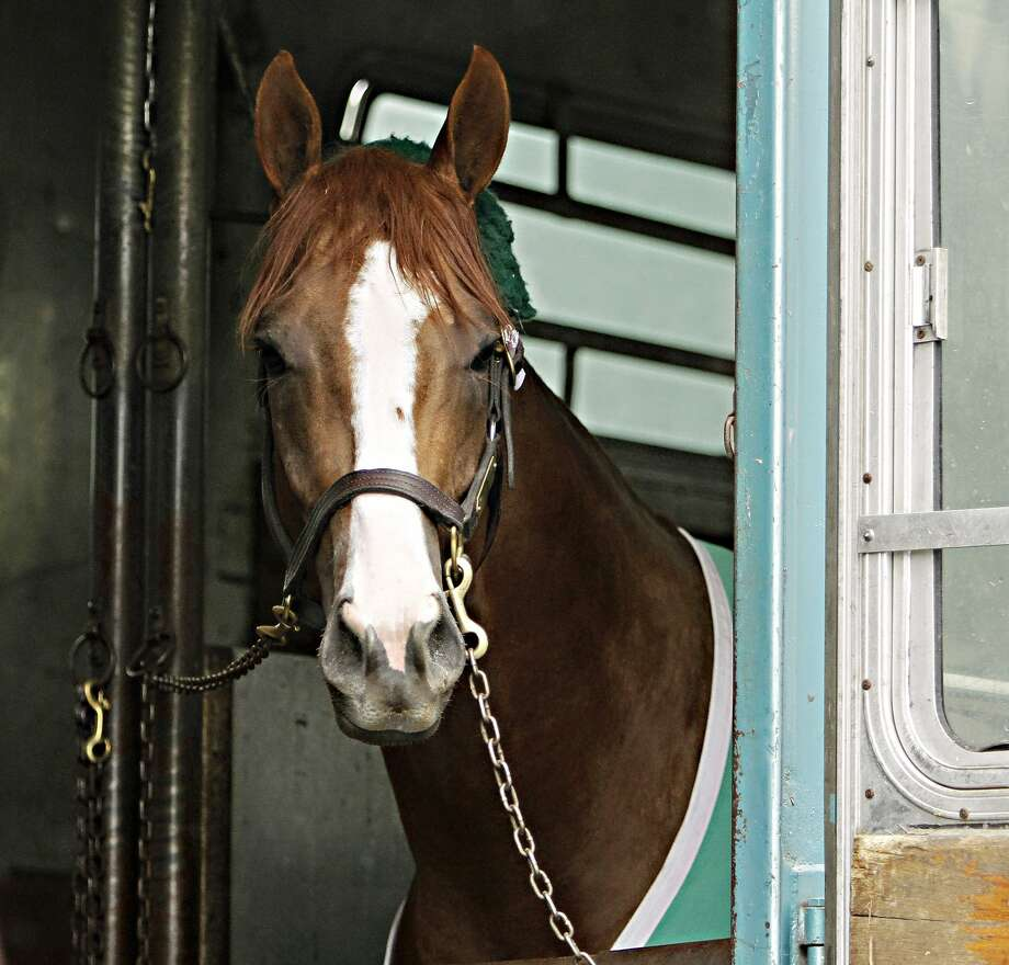 California Chrome faces his first race outside California. Photo: Garry Jones, Associated Press