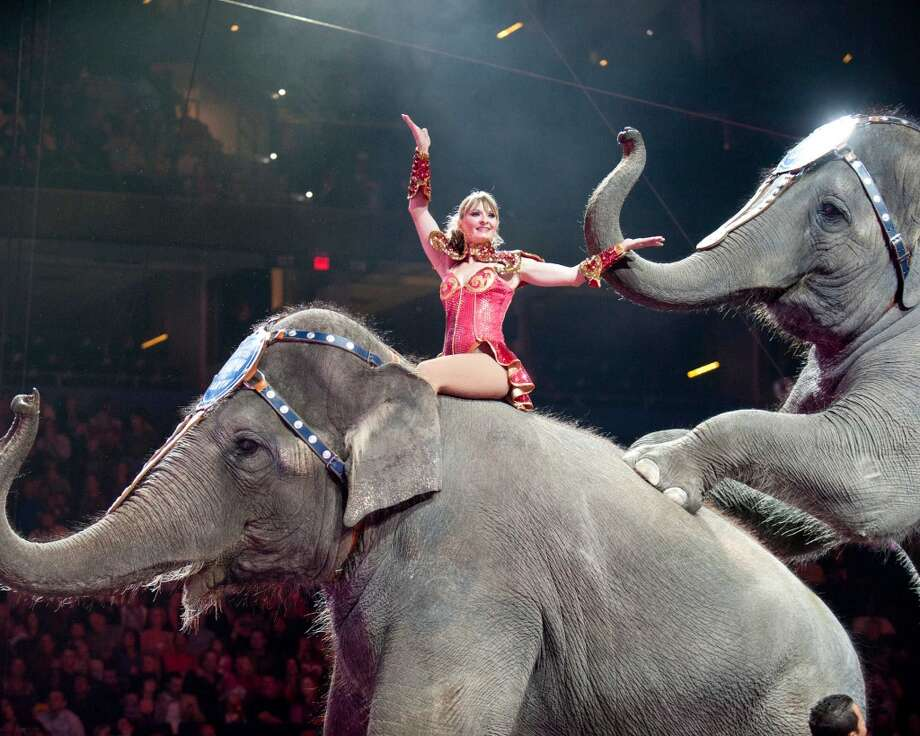 Performer Vicki Zsilak on an Asian elephant. Photo: Contributed Photo
