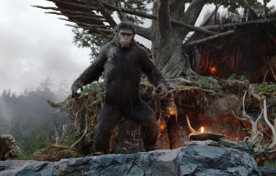 """""""Dawn of the Planet of the Apes""""IMDb: 8.6/10Rotten Tomatoes: 94 percentReview by Mick LaSalle: Not so easy to go ape over 'Planet of the Apes'Two-and-a-half stars""""Dawn of the Planet of the Apes"""" is an attempt at a serious action movie, but it doesn't quite satisfy. It has a few earnest ideas, but they don't go deep enough to matter, and they're slightly in conflict anyway. And as an action movie, it's slow and predictable. Photo: David James, Associated Press / 20th Century Fox"""
