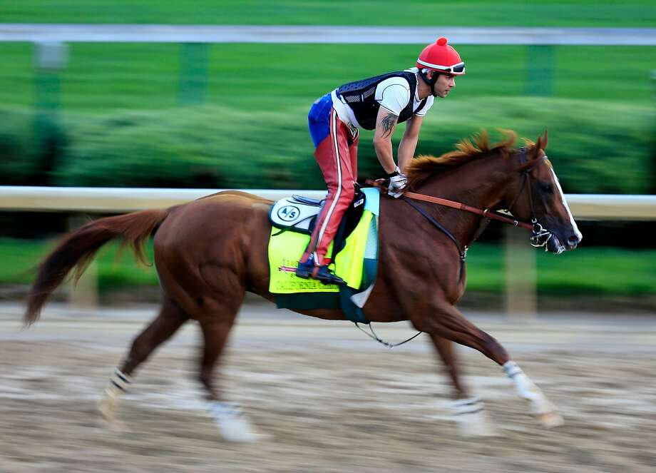 LOUISVILLE, KY - APRIL 30:  California Chrome ridden by William Delgado trains on the track during the morning exercise session in preparation for the 140th Kentucky Derby at Churchill Downs on April 30, 2014 in Louisville, Kentucky.  (Photo by Rob Carr/Getty Images) Photo: Rob Carr, Getty Images