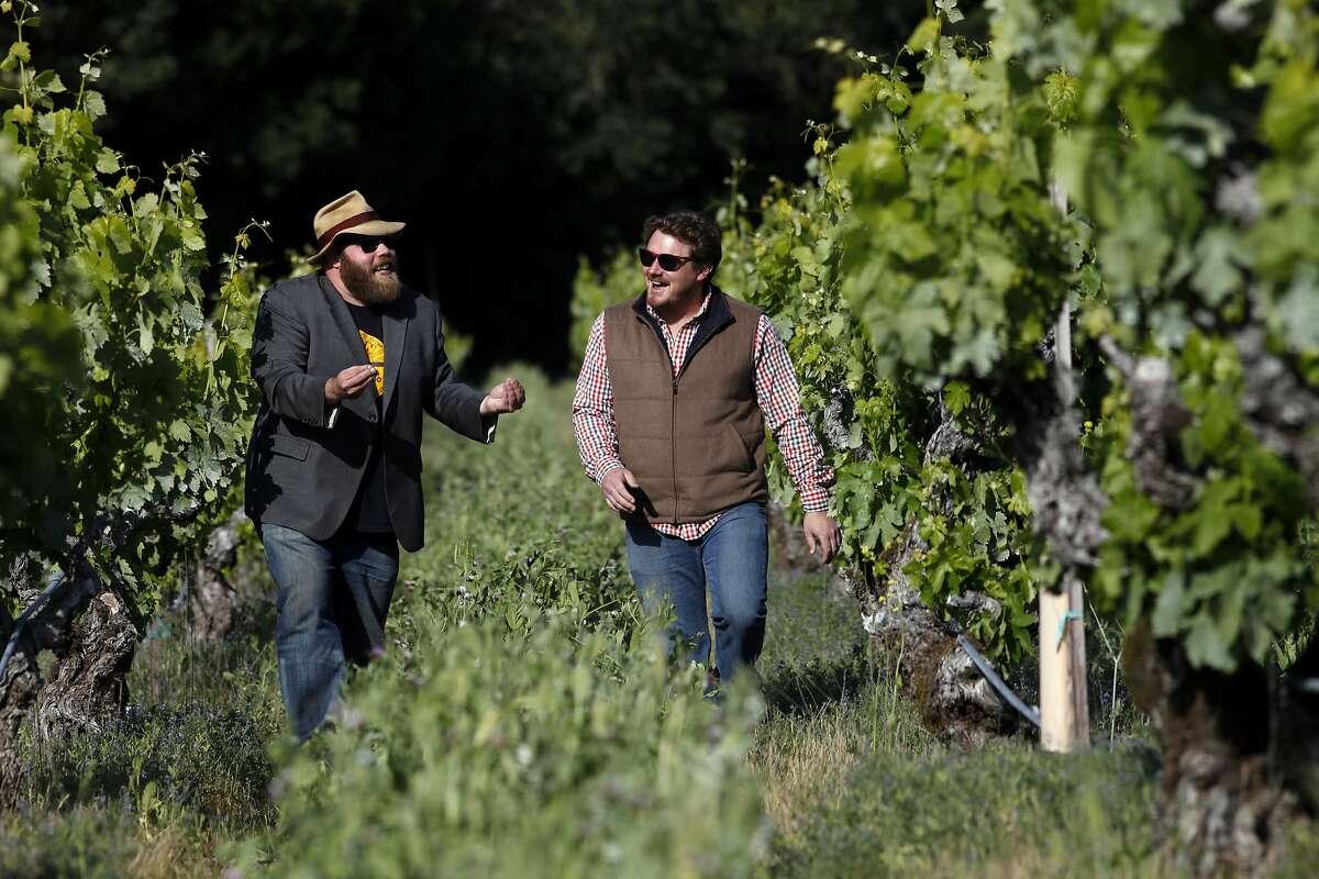 Chris Cottrell, left and Morgan Twain-Peterson, walk through the120 year old Zinfandel vines, Wednesday April 23, 2014, in Glen Ellen, Calif.