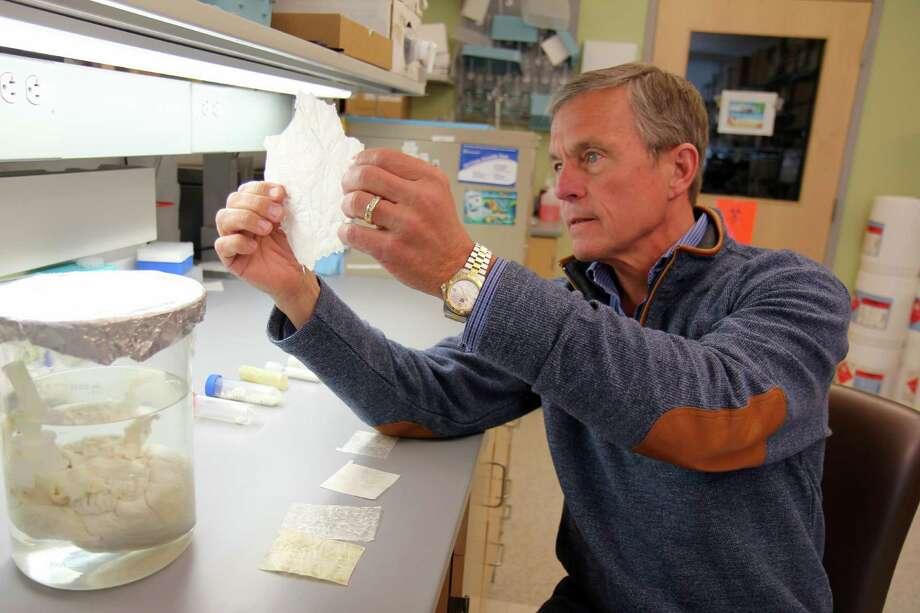 "Dr. Stephen Badylak deputy director of the McGowan Institute for Regenerative Medicine, displays a sheet of ""extracellular matrix."" Photo: HO / University of Pittsburgh Medical"